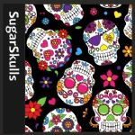 Mexican Sugar Skulls & Others